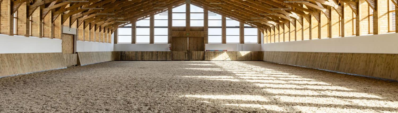 Reitboden Sandreinigung durch den Sandfuchs